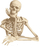 Skeleton-30160 1280.png